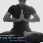 Foto del perfil de Enrique Rodriguez